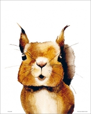 Poster, Squirrel