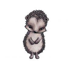 Seinätarra, Iggy the Hedgehog