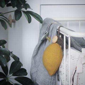 Lemon vaunulelu