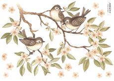 Wall stickers - Branch and Sparrows A3