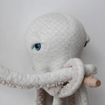 Small Albino Octopus